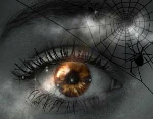 К чему снится паук?