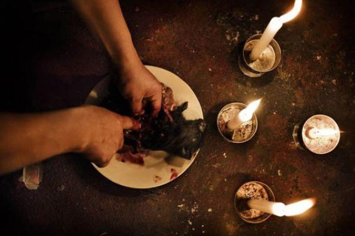 муж убил кота что делать ритуал как очистится
