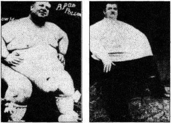 Сексуалный толстяки